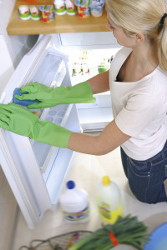 Fridge Cleaning Kings Langley